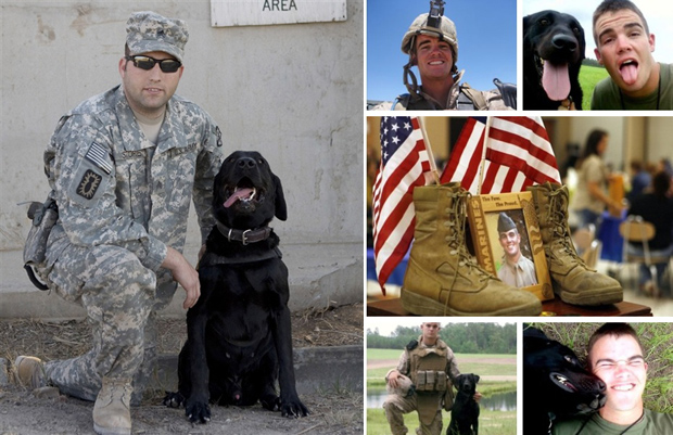 Its-a-Lab-Thing-Veterans-Day-Labradors008