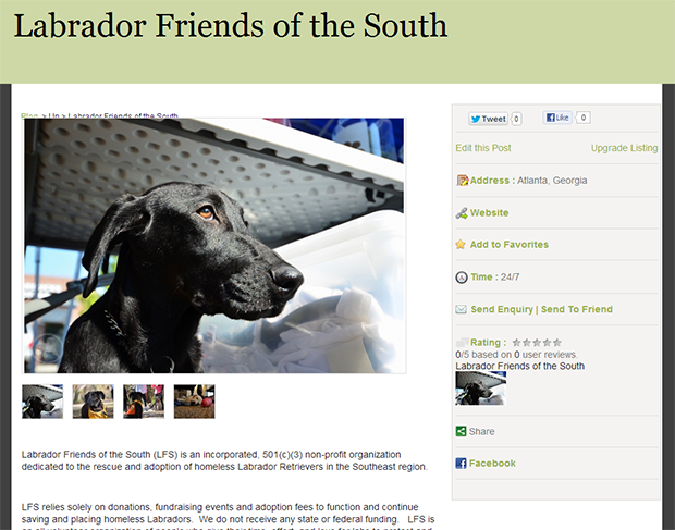 its_a_lab_thing_pick_of_the_litter_labrador_rescue_breeder_guide_preview