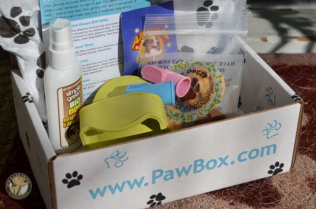 It's a Lab Thing PawBox-1
