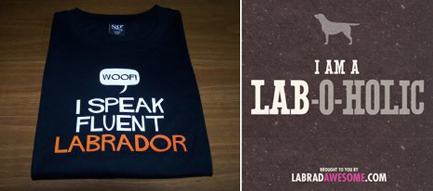 Its-a-Lab-LabCool-Labradors-Worldwide-004