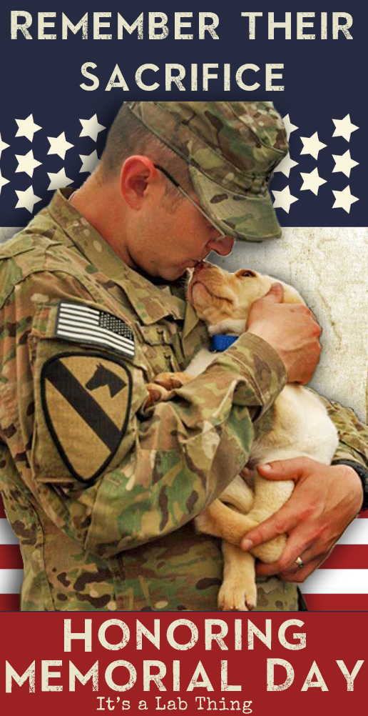 It's a Lab Thing Memorial Day Labrador and Soldier