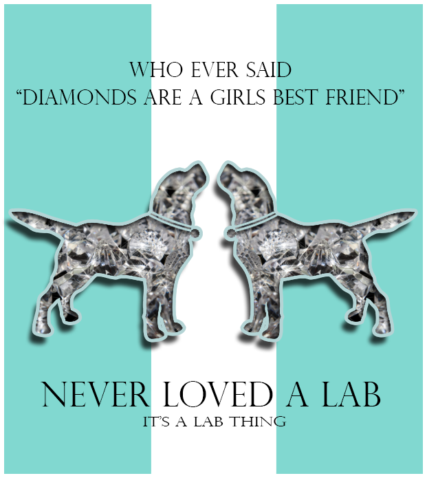It's-a-Lab-Thing-diamond-Labradors Love