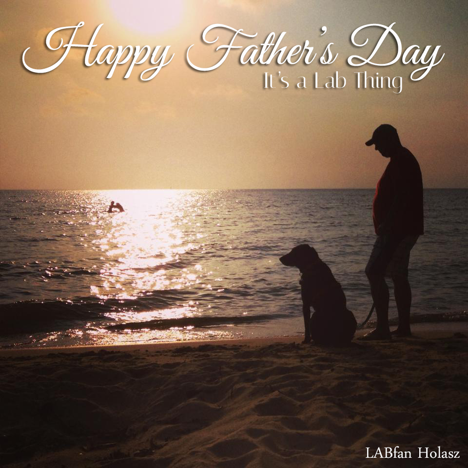 Its a Lab Thing fathers day labrador