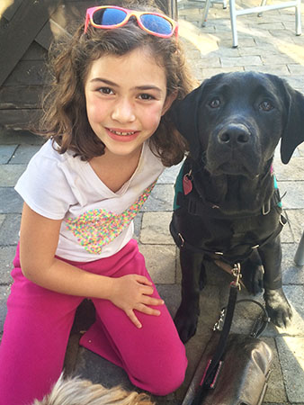 It's a Lab Thing Conversations with Dog by Liz Kover Labrador Dog Training To Pet or Not to Pet