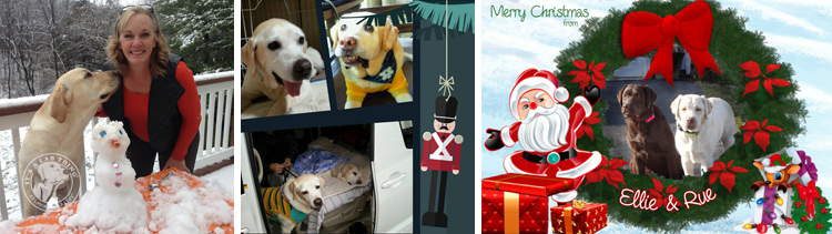 023-Christmas-Holiday-Labrador-Retrievers-Presents-Santa-