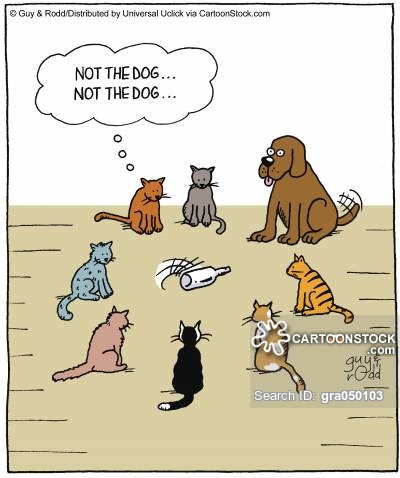'Not the dog, not the dog, , ,'